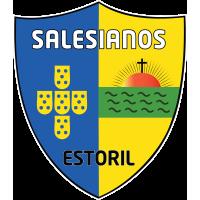 Logo SAL
