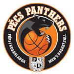 Logo PVS