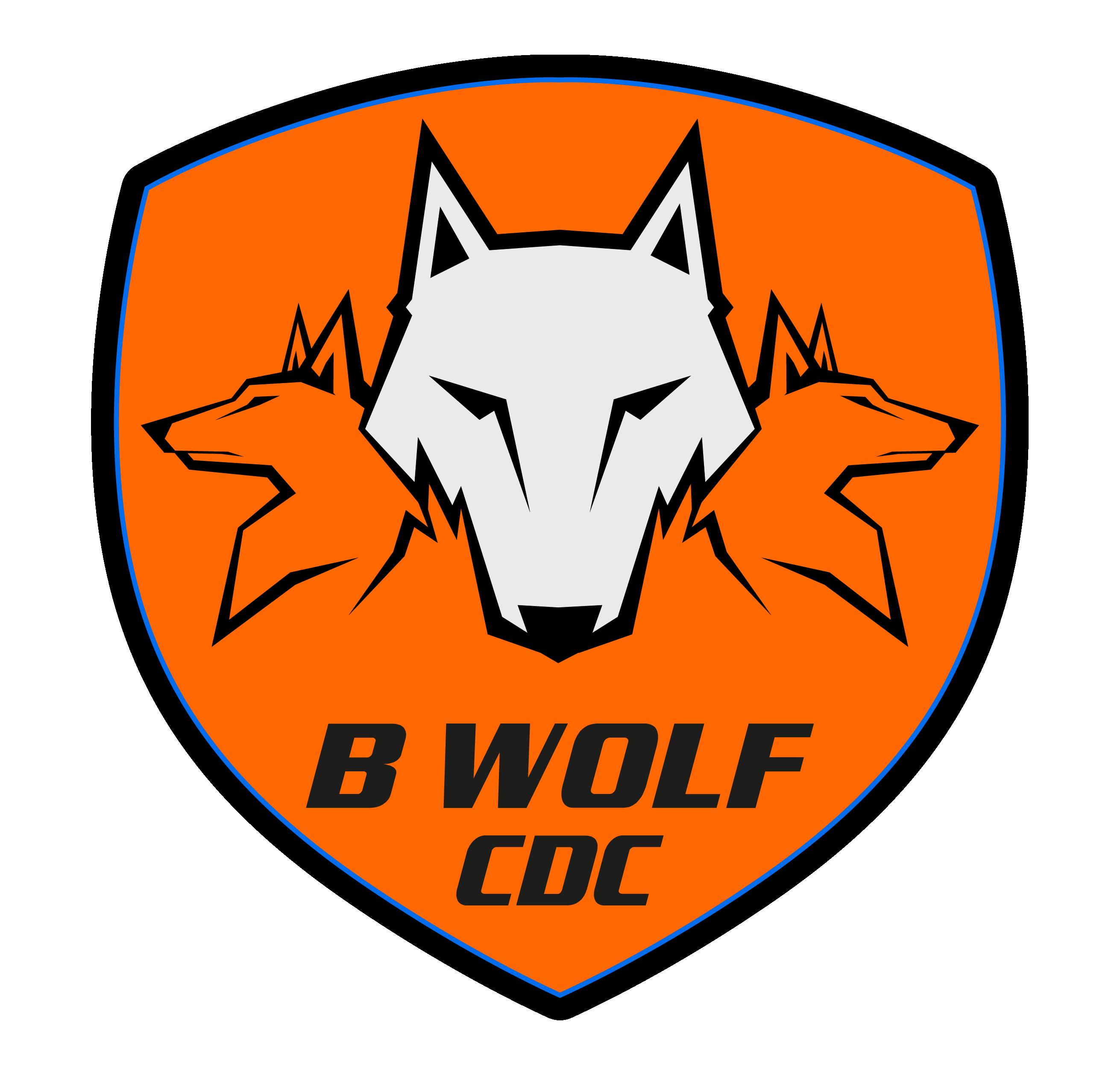 Logo B_W